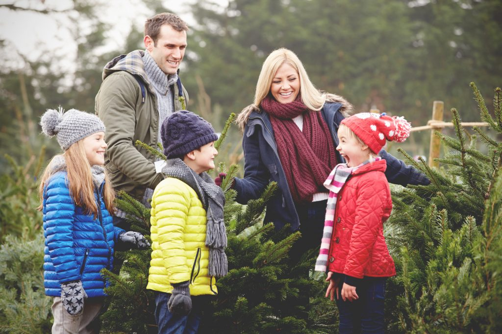 Christmas Tree Family Mini Sessions