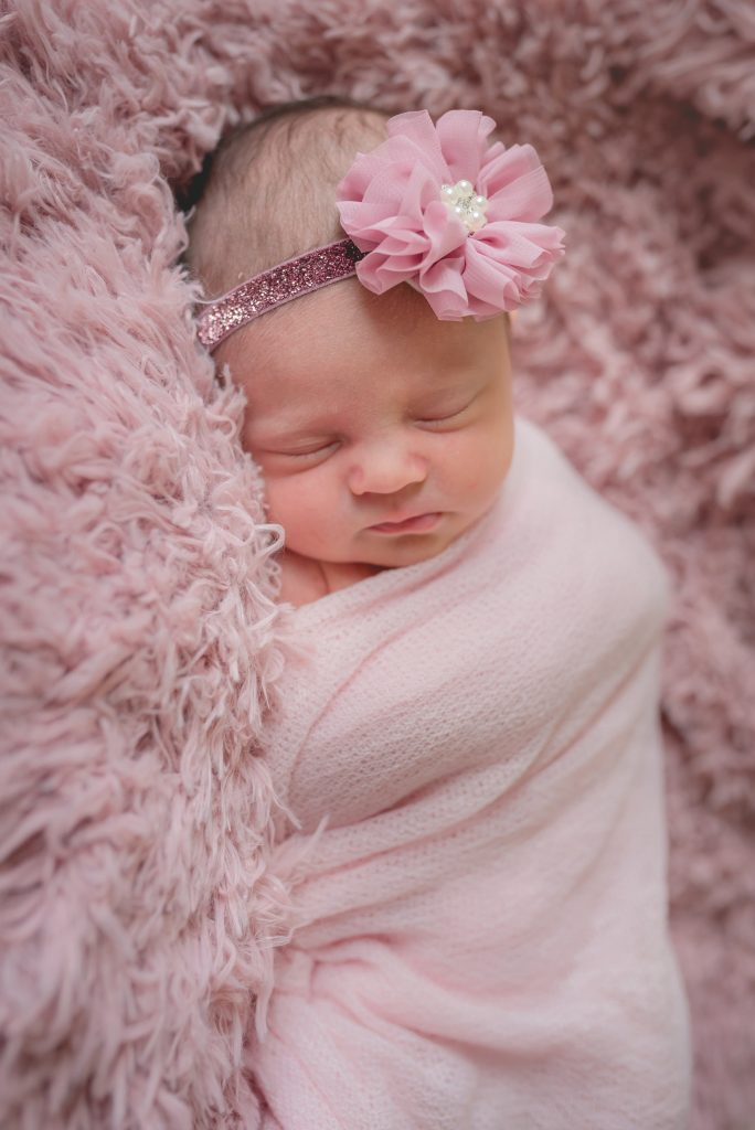 edwardsville newborn photos