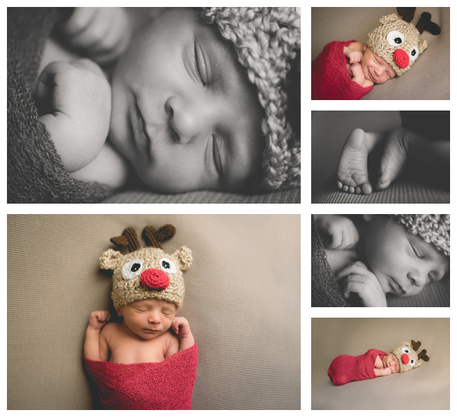 Edwardsville Newborn Photographer & The Newest Reindeer
